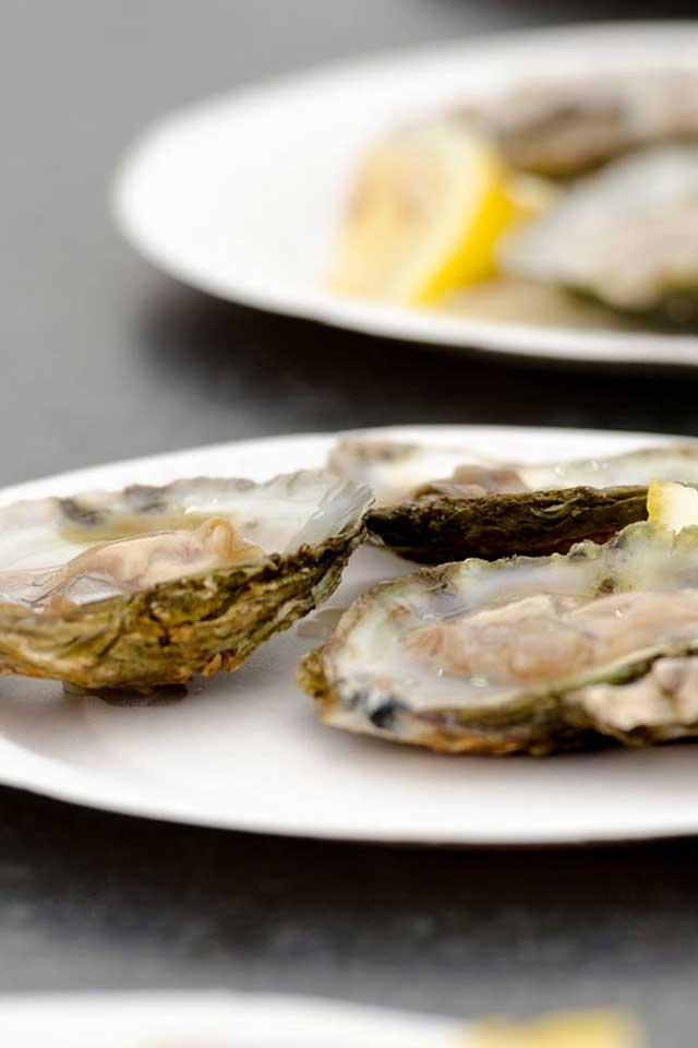 Fresh Cornish oysters on white plate
