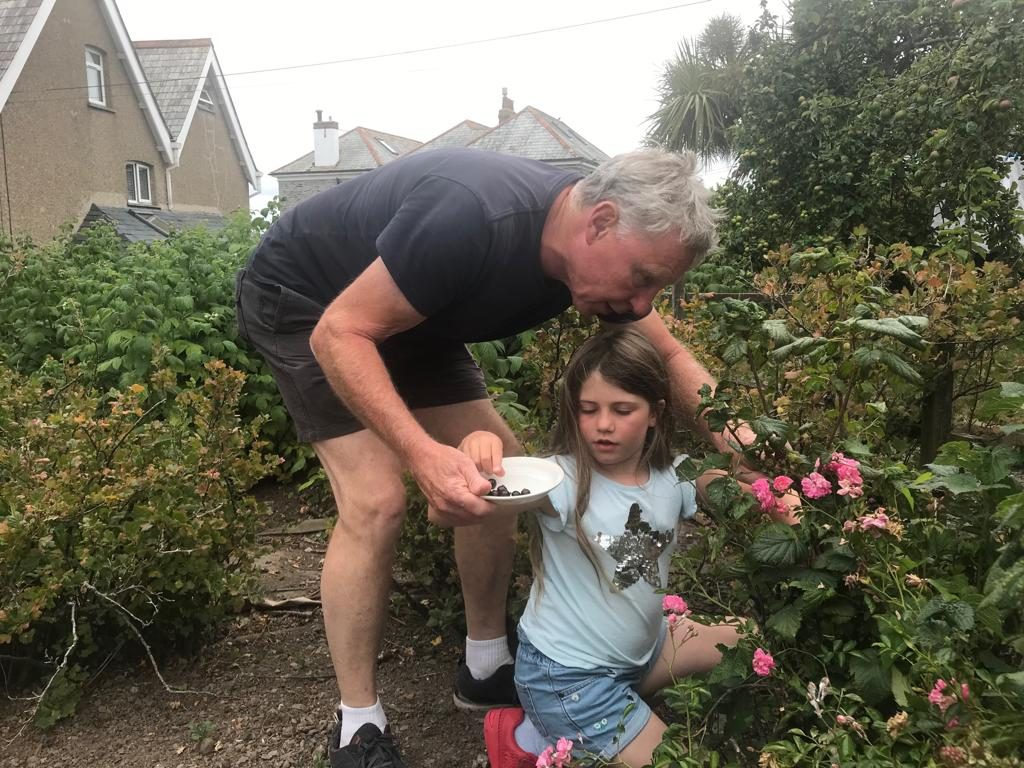 Girl and granddad blackberry picking
