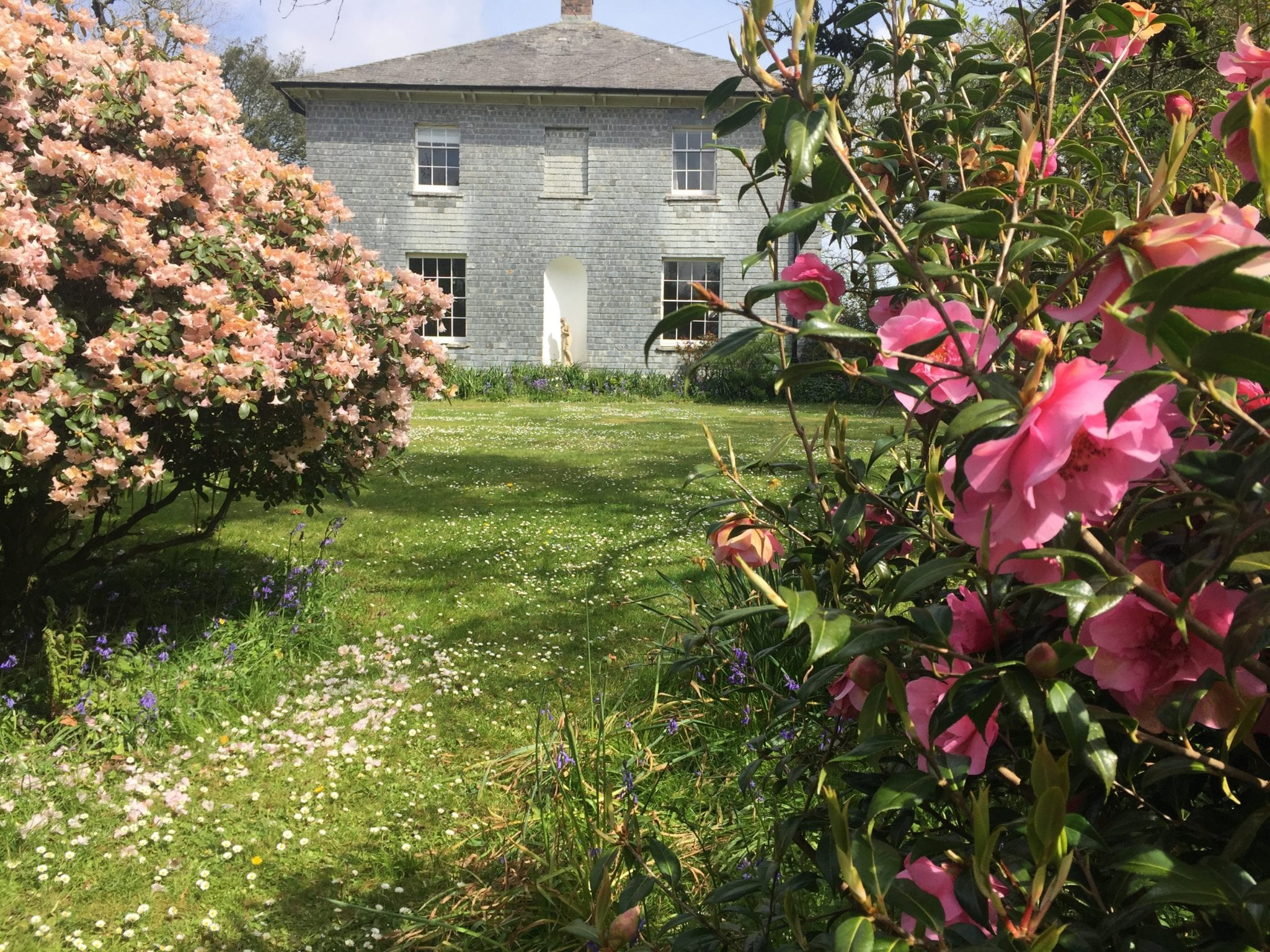 green lawns and pink flowering bushes in Georgian country house garden