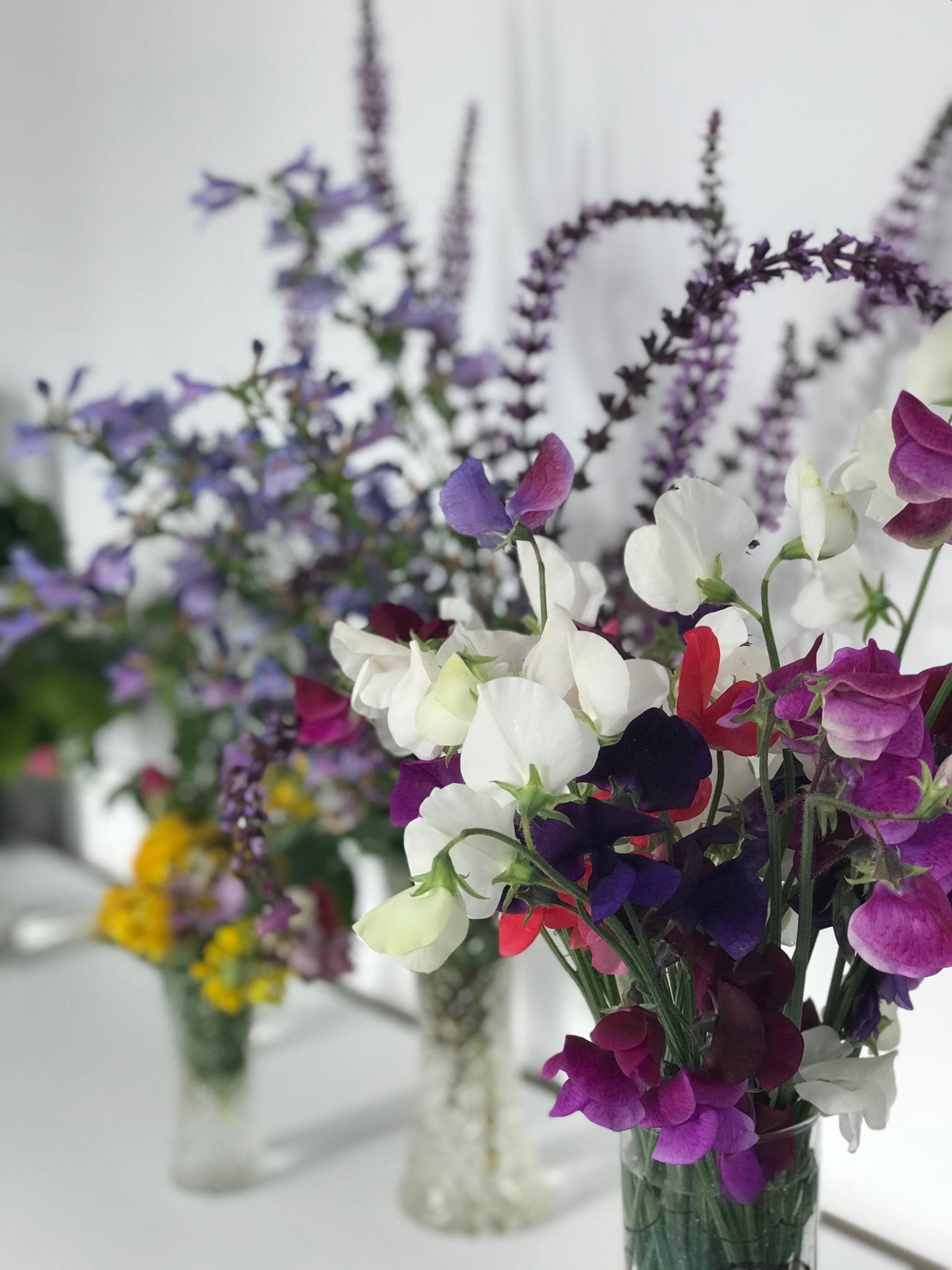 colourful sweet pea flowers in jars on ledge