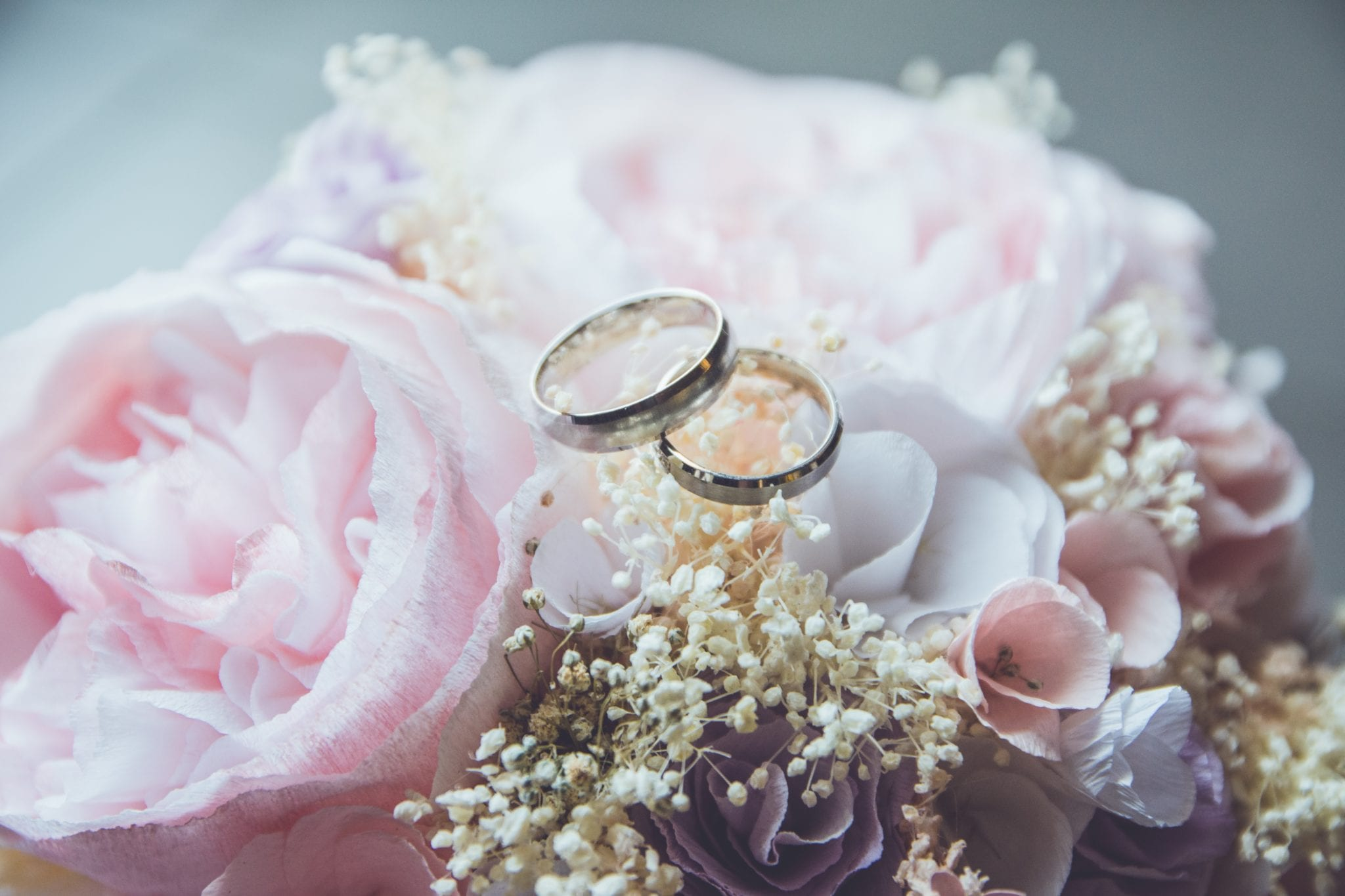 silver wedding rings on pink roses