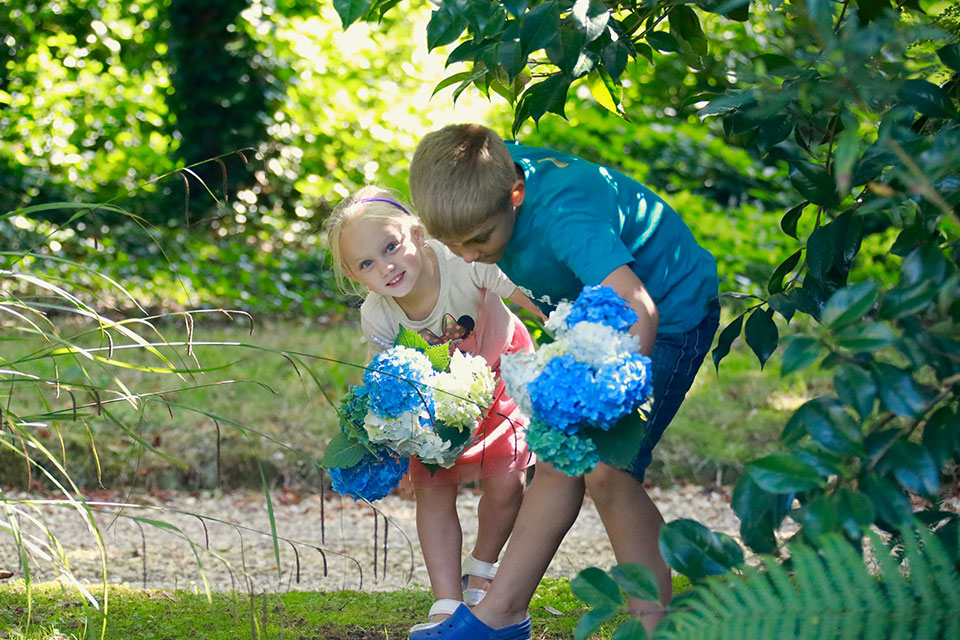 boy and girl picking blue and cream hydrangea flowers for a summer wedding