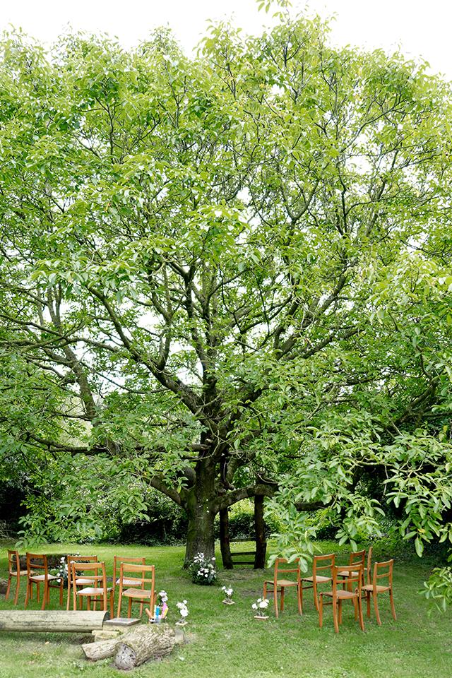 Oudoor wedding ceremony under walnut tree in country garden