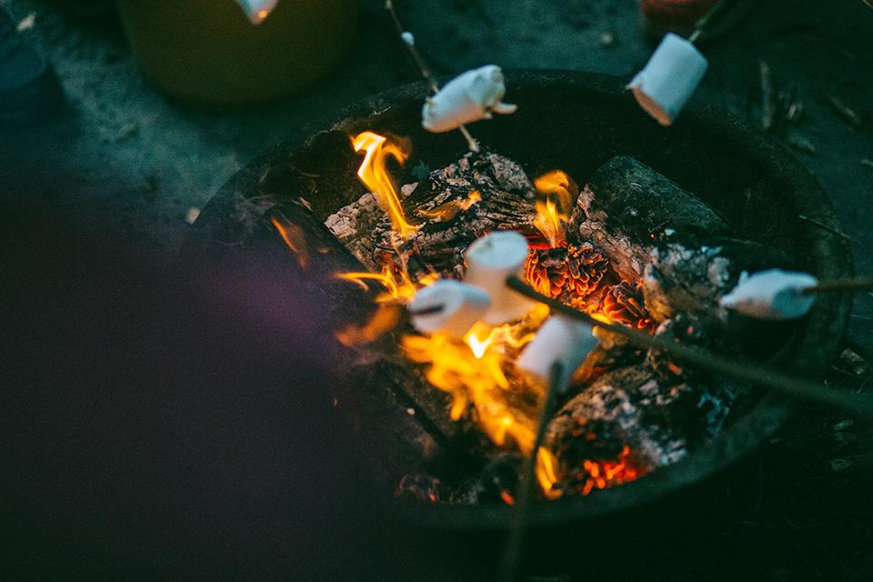 Toasting marshmallows on sticks around a fire pit